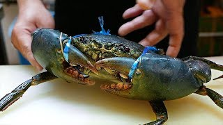 Japanese Street Food - GIANT MUD CRABS Crab Dumplings Chilli Okinawa Seafood Japan