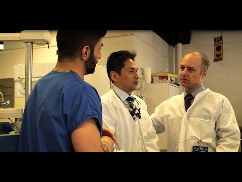 Endodontics: NYU Dentistry Advanced Education Program