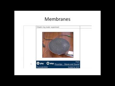 Standing waves on rods and membranes