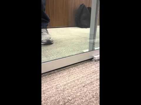 Sliding Door Drop Seal