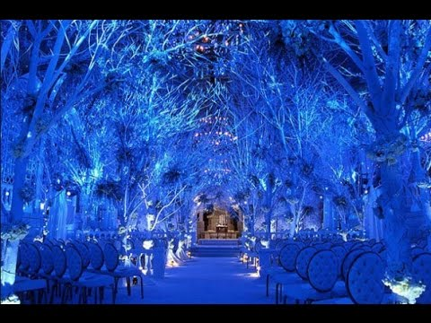 Catchy Wedding ideas about Winter Wonderland Wedding