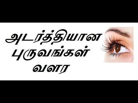 உங்கள் புருவம் அடர்த்தியாக வளர:Dense eyebrows grow-Natural Tamil Medicine