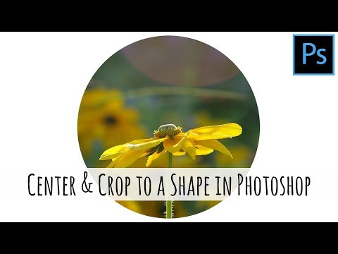 Photoshop - How to center a shape and crop an image to that shape