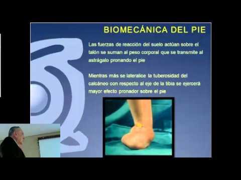 Fisiopatología y Biomecánica de la Insuficiencia Tibial Posterior