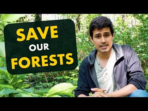 Save our Forests! | National Forest Policy 2018 Explained by Dhruv Rathee