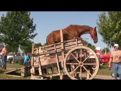 HORSE- POWERED GRAIN SEPARATOR