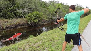 Bow Fishing Colorful Fish To Feed My Massive Pets!!