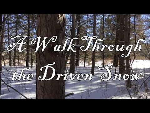 A Walk Through the Driven Snow
