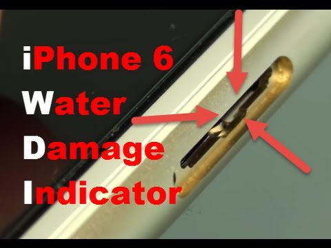 Check If iPhone 6 is Water Damaged With Visual Inspection (Close Up)