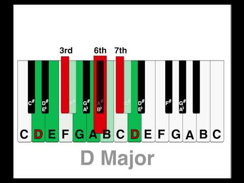 SCALE GENIE™ Keyboard & Piano major and minor scale stickers with fingering