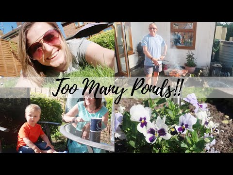 TOO MANY PONDS! | THE SATURDAY VLOG #45 | CARLY ELLEN