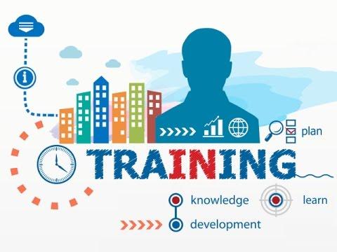 MLM Business Basics Training with Six Figure Earner Coach Chi (Team Training)