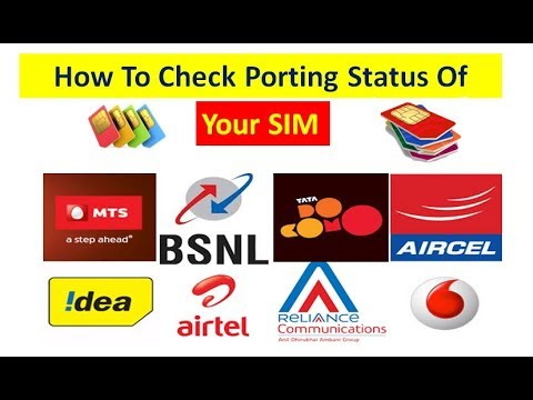 How To Check Your Port Status