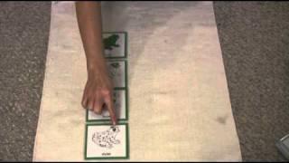 Montessori Bonus Lessons - How To Use 3 Part Cards In A Montessori Lesson