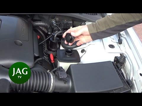 Power Steering Fluid, checking and topup, Jaguar S-Type R STR