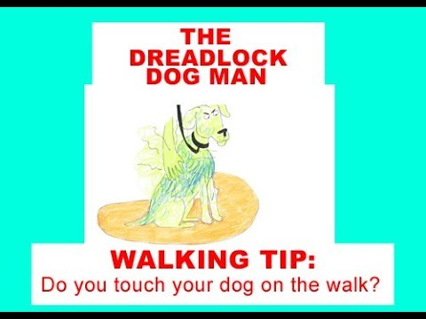 Walking Tip: Do You Touch Your Dog On The Walk?