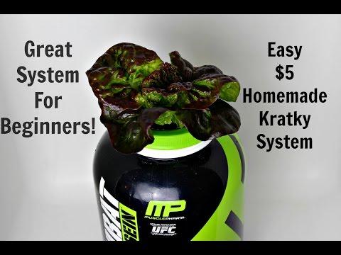 Easy $5 Homemade Hydroponics System DIY  in 5 Minutes Kratky Method