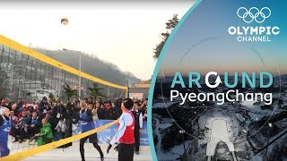 Have You Heard of Snow Volleyball? | Around PyeongChang