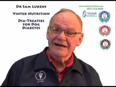 Dia-Treaties for dog diabetes treatment - The New Protocol
