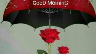 Good Morning Tamil Song 55 Music Jinni