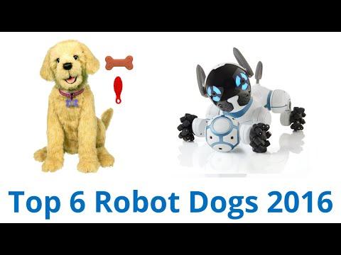 6 Best Robot Dogs 2016
