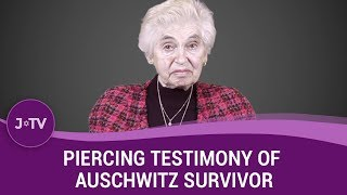 Piercing Testimony of Auschwitz Survivor