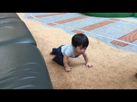 Cuộc sống Mỹ: Baby Nolan biết bò lúc 7 tháng đi chơi công viên. Baby Nolan can crawl at 7 months