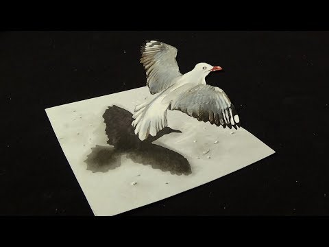 FLYING BIRD ILLUSION - How to Draw a Seagull - 3D Trick Art on Paper