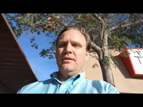 Home Scorpion Remedies - Scorpions in the Trees? Phoenix / Scottsdale Naturzone Pest Control