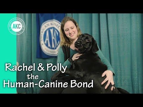 Rachel and Polly - The Human Canine Bond - AKC Rally National Championship