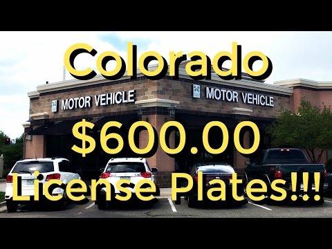 $600.00 LICENSE PLATES - LIFE IN COLORADO