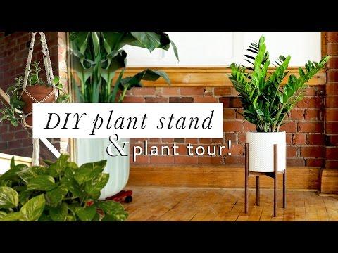 DIY MID CENTURY MODERN PLANT STAND & PLANT TOUR