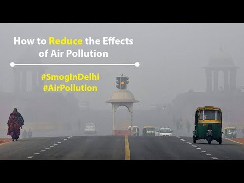 How to Reduce the Effects of Air Pollution? | Smog in Delhi