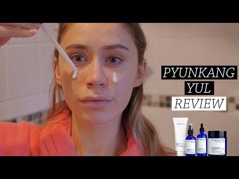 DID IT WORK? Pyunkang Yul Korean Skin Care Review YesStyle