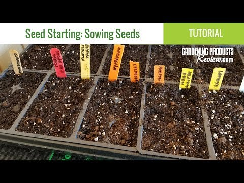 How to Successfully Start Seeds Indoors - Peppers, Tomatoes, Herbs, Flowers