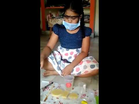 Soap making Lab Activity by Shaanvi