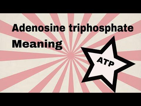 Adenosine triphosphate meaning