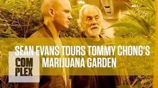 Tommy Chong's Medical Marijuana Garden | Complex