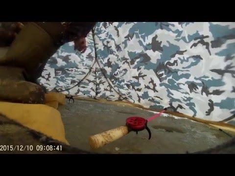 на что ловить на сурском водохранилище