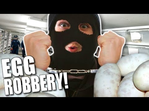 SNAKE EGG THIEF!!! | BRIAN BARCZYK