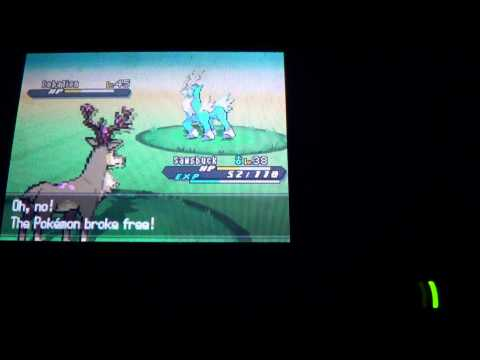 Pokemon Black and White 2-Catching Cobalion