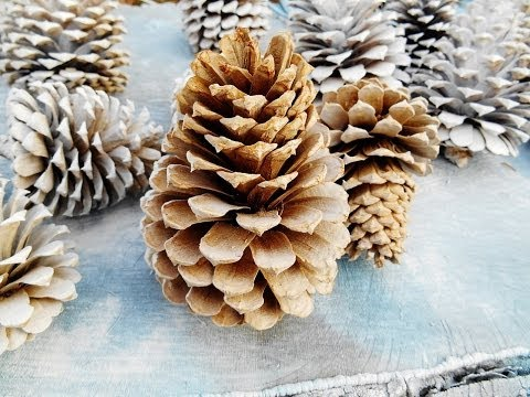 DIY Bleaching wood/ pinecone