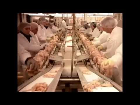 How KFC Original Recipe Fried Chicken is Made Things You Might Not Know