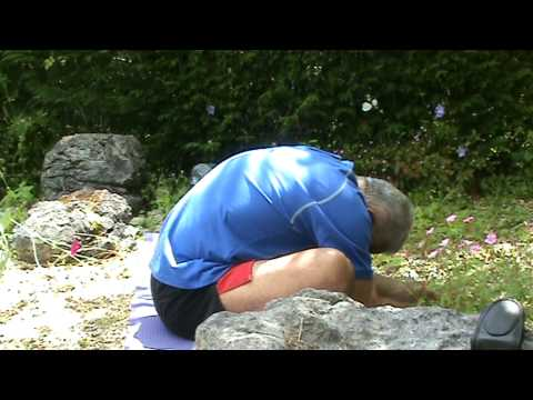 Yoga Posture for Pancreas