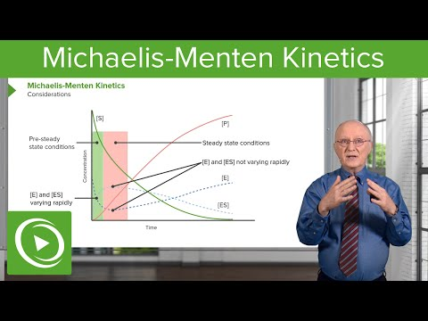 Michaelis-Menten Kinetics: Considerations & Time Relation – Biochemistry | Lecturio