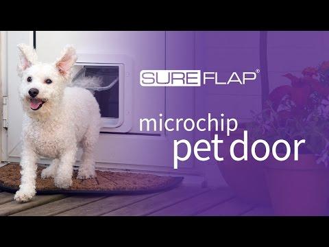 SureFlap Microchip Pet Door - Door Installation
