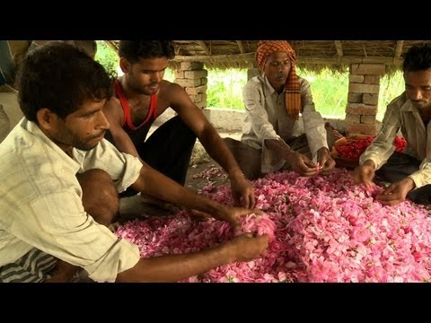 India's perfume capital threatened by scent of modernity