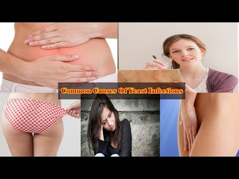 6 Most Common Causes Of Yeast Infections  V 4 YOU