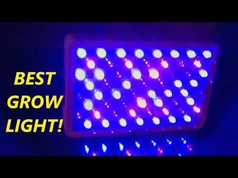 HIGROW Optical Lens-Series 600W Full Spectrum LED Grow Light for Indoor Plants