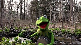"""A Special Performance of """"Rainbow Connection"""" from Kermit the Frog 